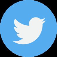 Lifelines - Twitter icon